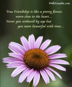 True_Friendship1